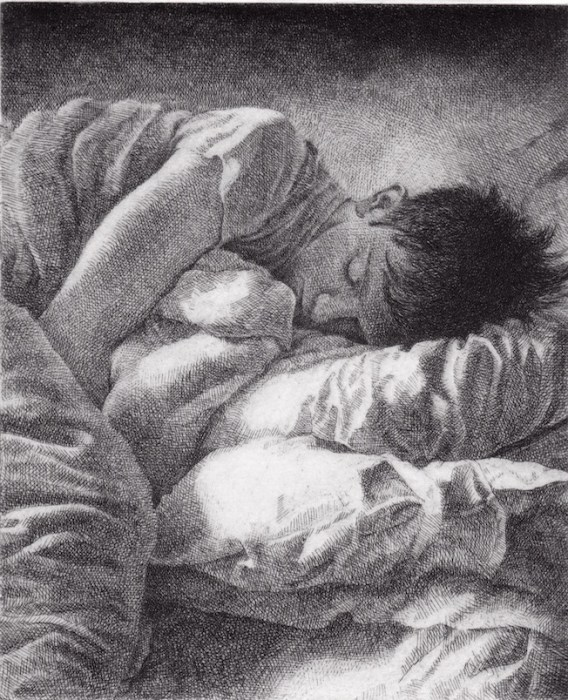 Prints Dreamer Sleeper Pillows Etching