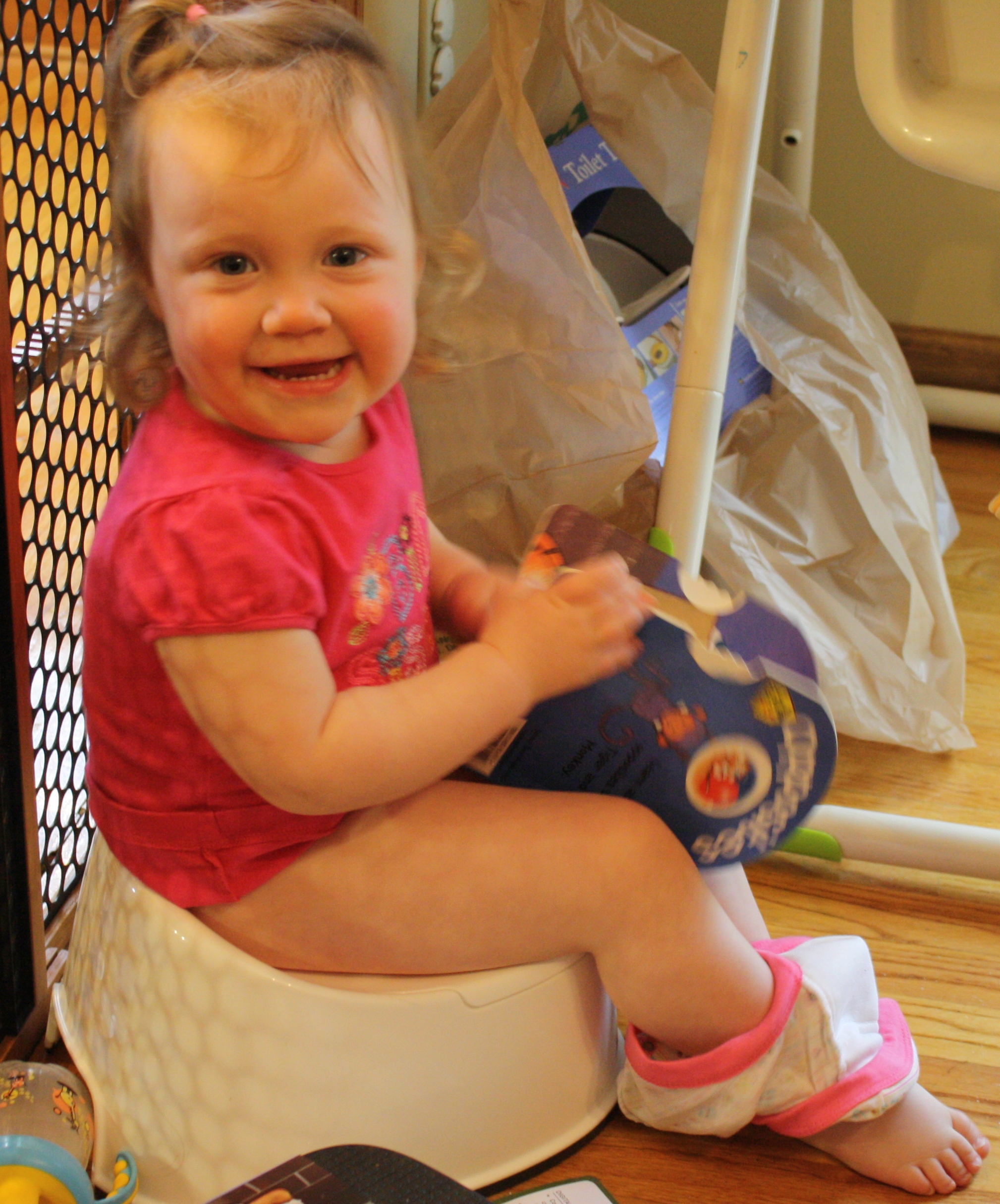 singing potty chair special needs bouncy toilet training | whatever!