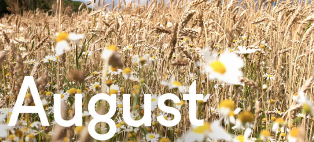 August Already…