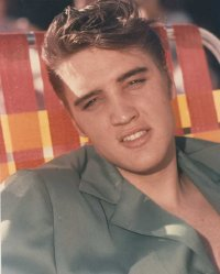 Elvis Presley in 1954, the year his career takes off