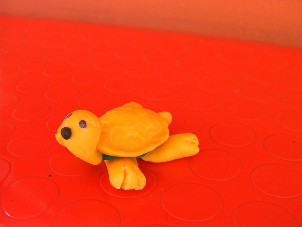 pasta di mais (3): tartaruga e porcellino (6/6)