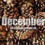 december julepynt grankogler lisesommerlund.dk
