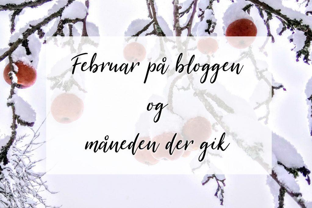 Februar måned på bloggen og lidt om måneden der gik