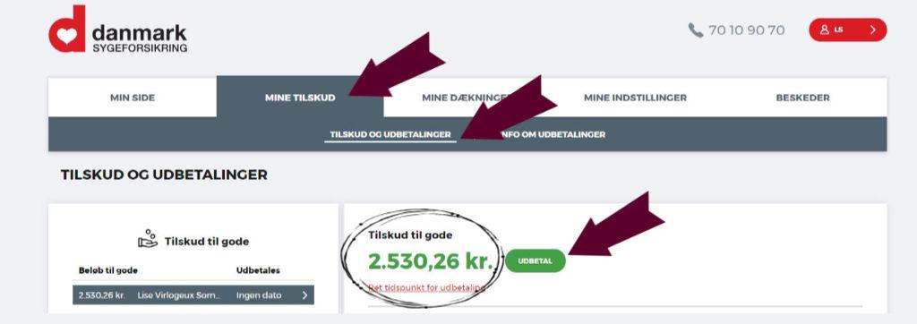 Sygesikring Danmark penge  tilskud til gode