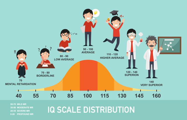 IQ test kind IQ curve Lisette Schijft