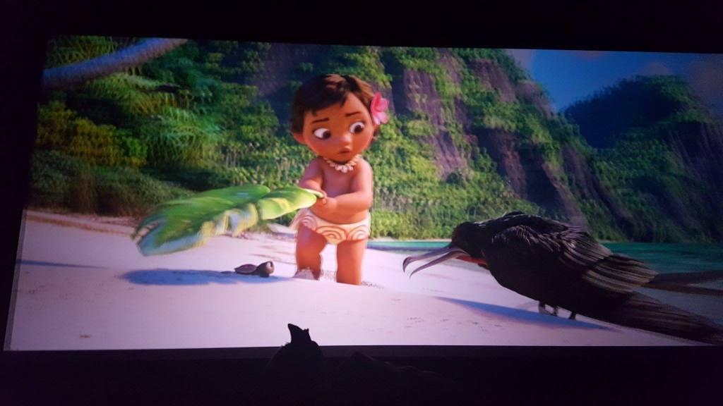 bioscoop Vaiana kerstvakantie kinderen film