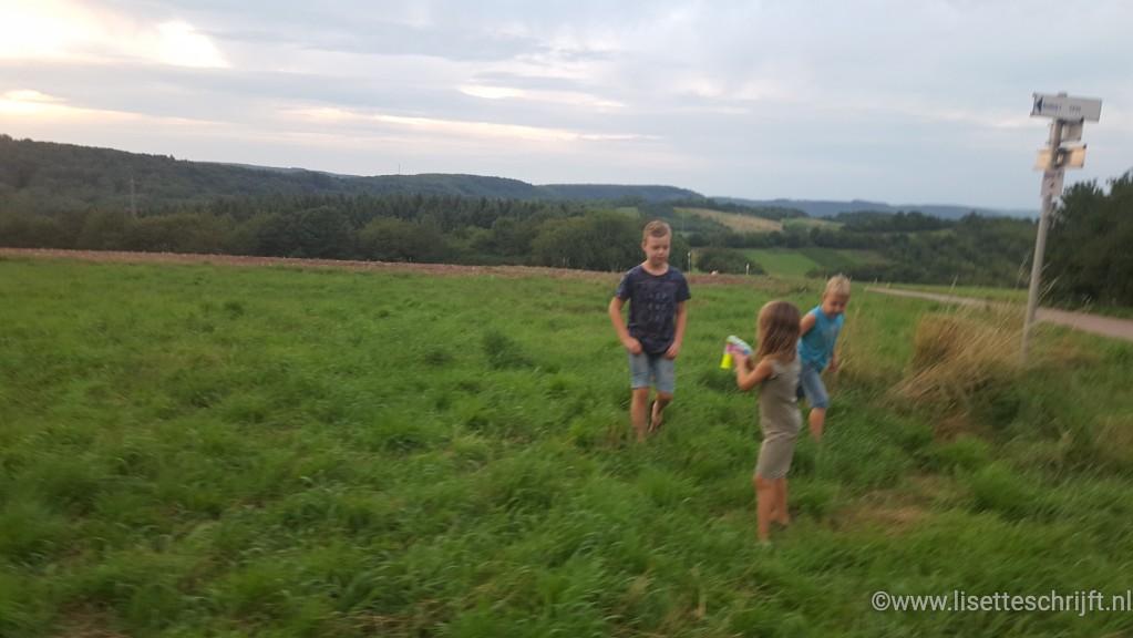 De omgeving van camping de Warsberg in Saarburg
