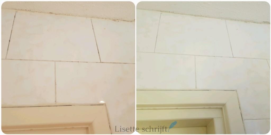 badkamer schoonmaken met Prowin badkamer reiniger Lisette Schrijft