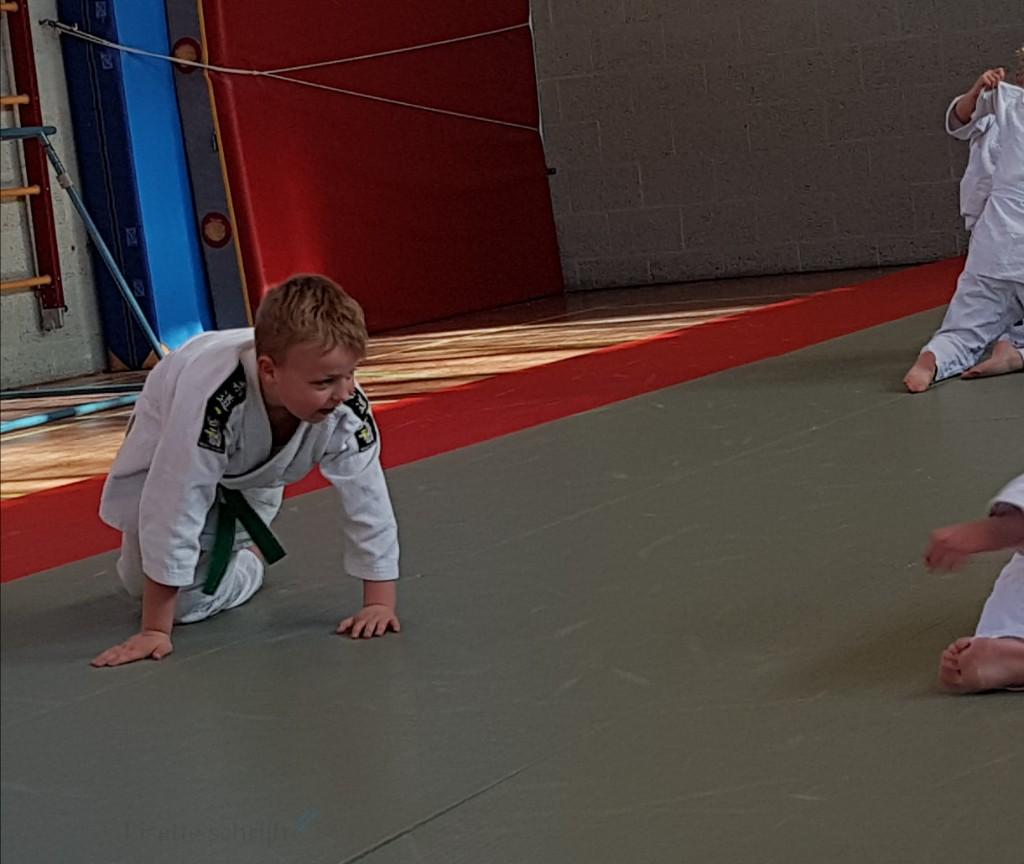 judo examen weekoverzicht voldoening Lisette Schrijft