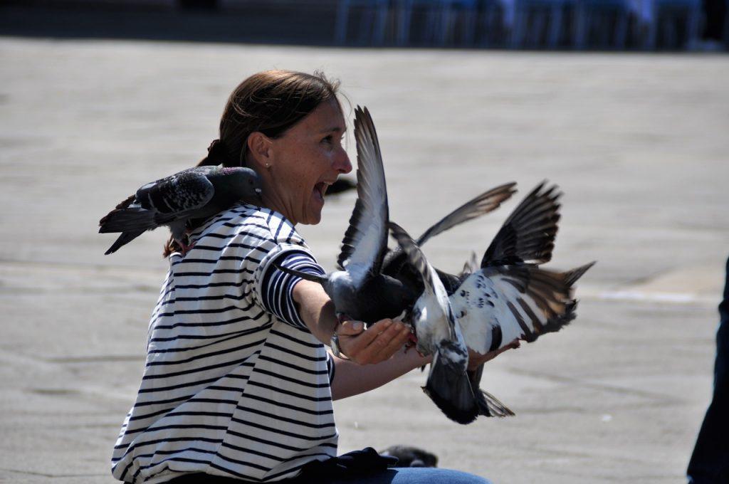 kun je vogelfobie hebben
