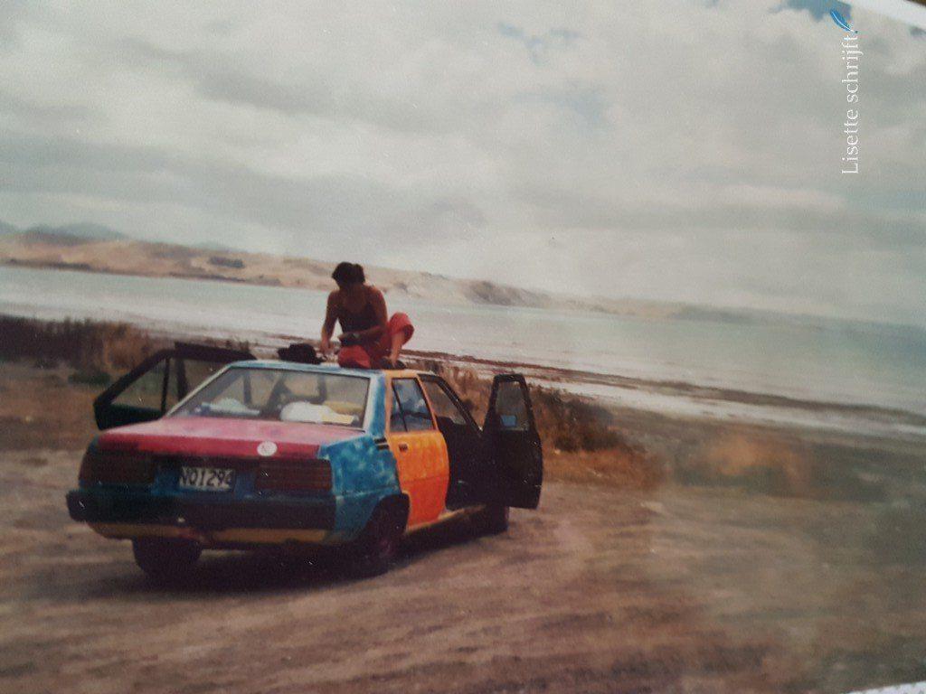 een auto met heel veel kleuren gekocht in Nieuw-Zeeland Lisette Schrijft