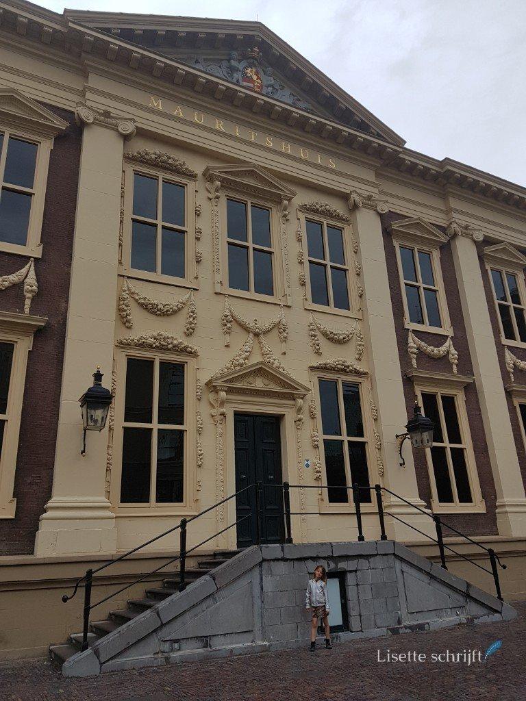 Het Mauritshuis in den Haag