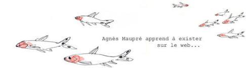 bandeau site Agnes maupré