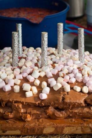 Krasjkake med blåbær og mashmallows. Foto: Lise von Krogh.