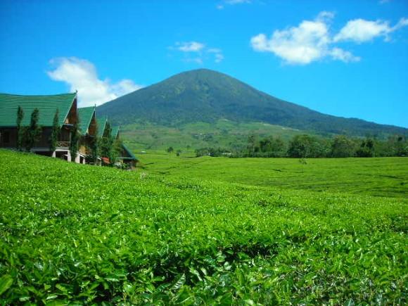 wisata in sumsel palembang  Lisnawati