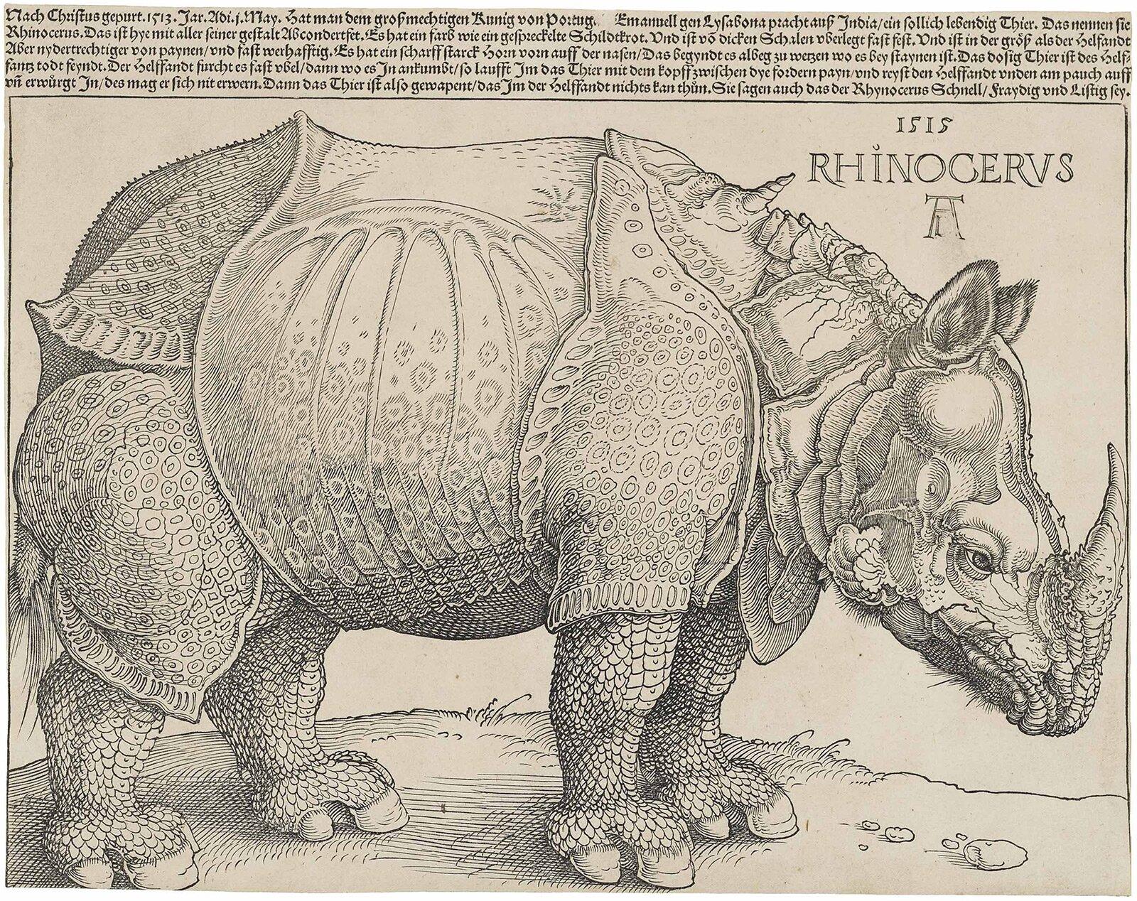 Первая версия гравюры на дереве рисунка авторства Albrecht Dürer