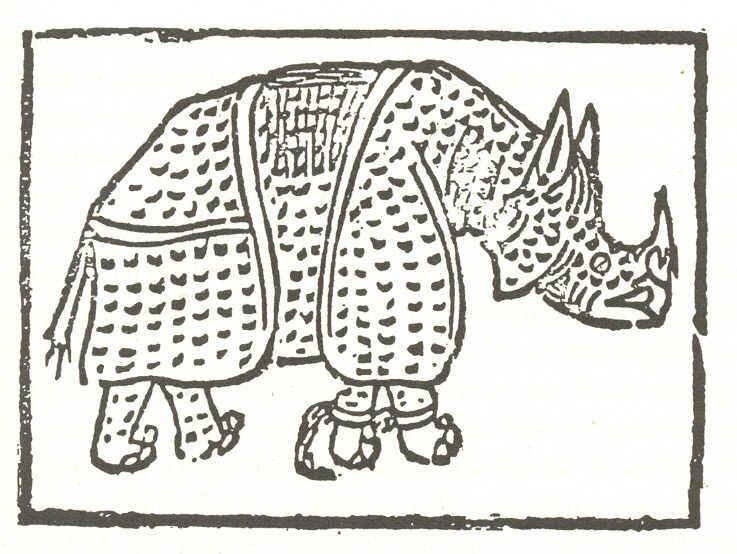 Первый рисунок носорога, автор неизвестен