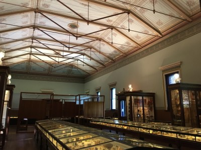 Interior of the Museum of Economic Botany