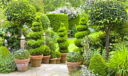 Topiary ... what's not to love