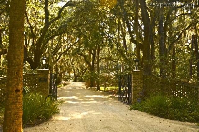savannah entry gate drive