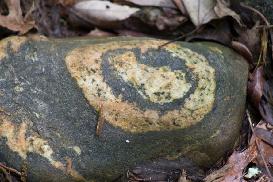 Beautiful Bulls-eye rock is tucked neatly among the plants