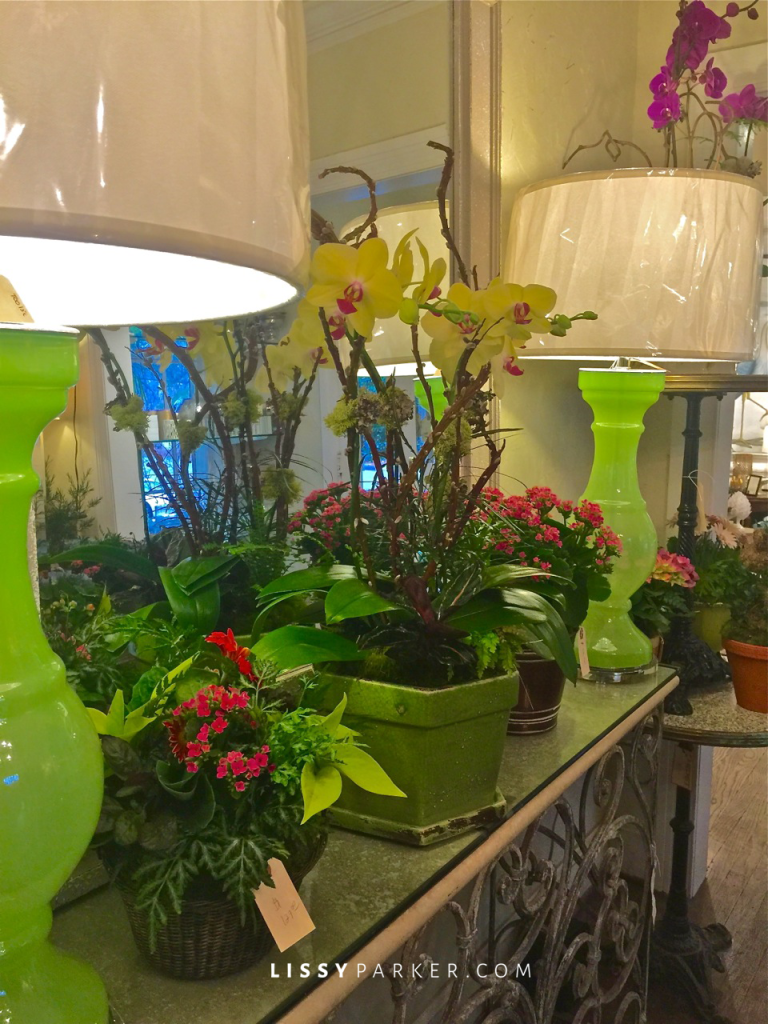 Spring green lamps and orchids