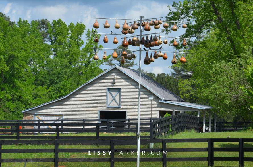 The barns were so charming—love the black fence