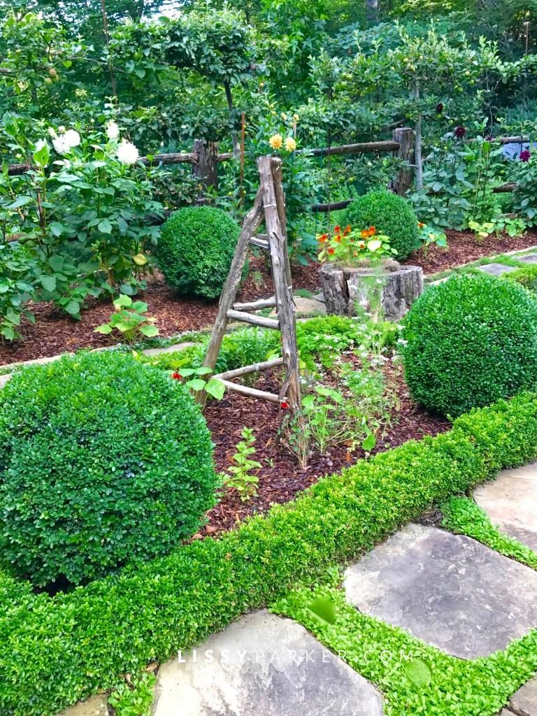 Garden tuteurs