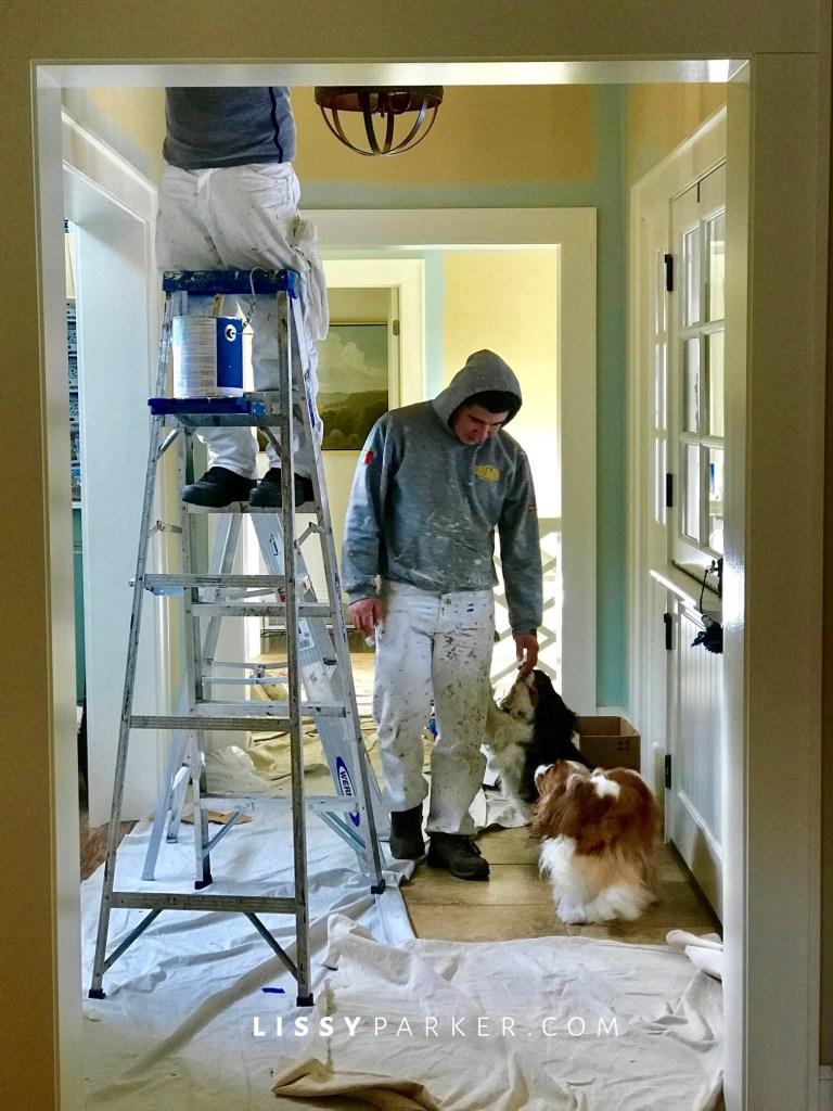paint puppies