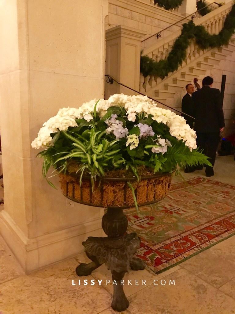 hydrangea planters