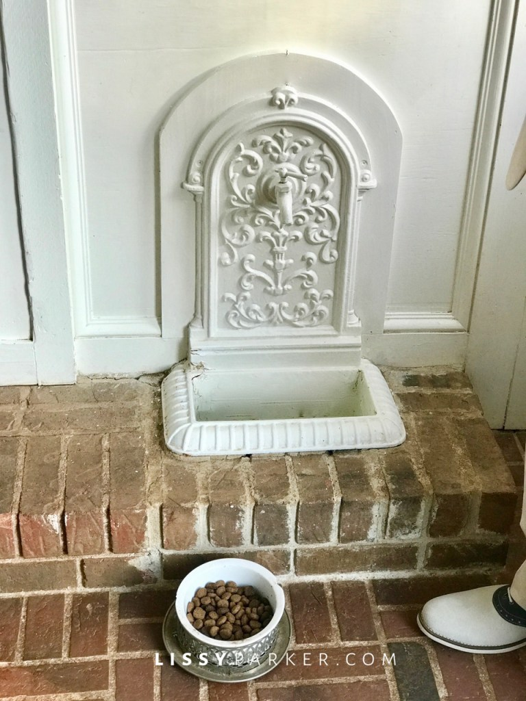 dog bowl fountain