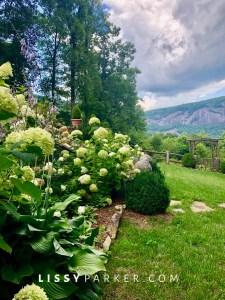 Fall mountain garden