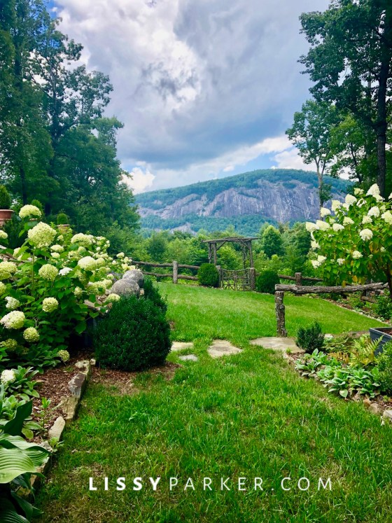 mountain Summer garden