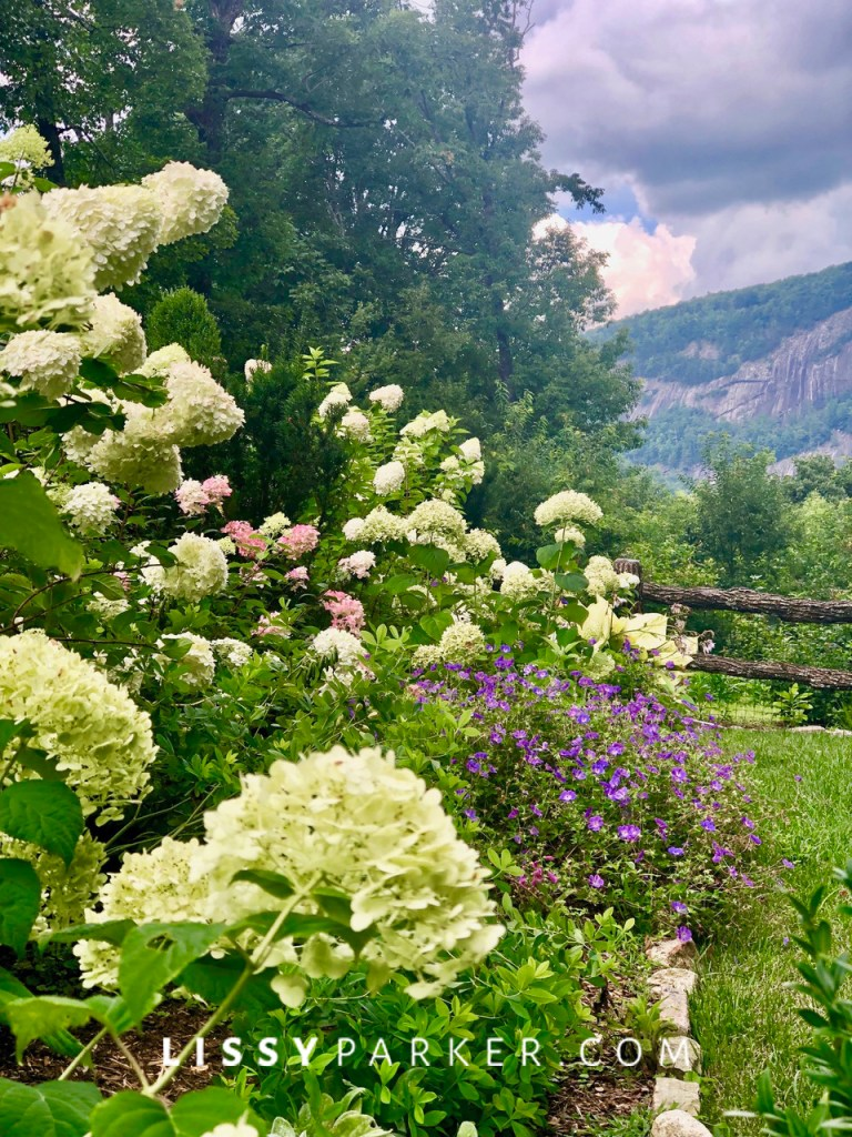 Summer mountain garden