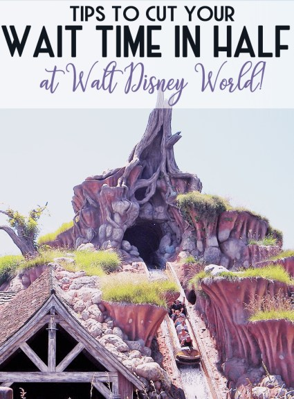 How To Cut Down on Wait Times at Walt Disney World