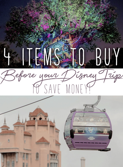 4 Things To Buy BEFORE Going to Disney – To Save Lots of $$
