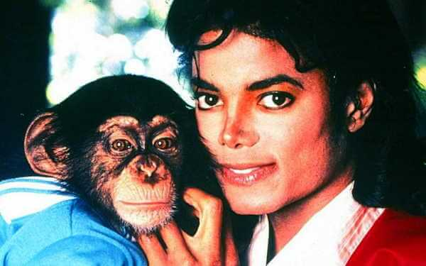 Michael Jackson's Chimpanzee