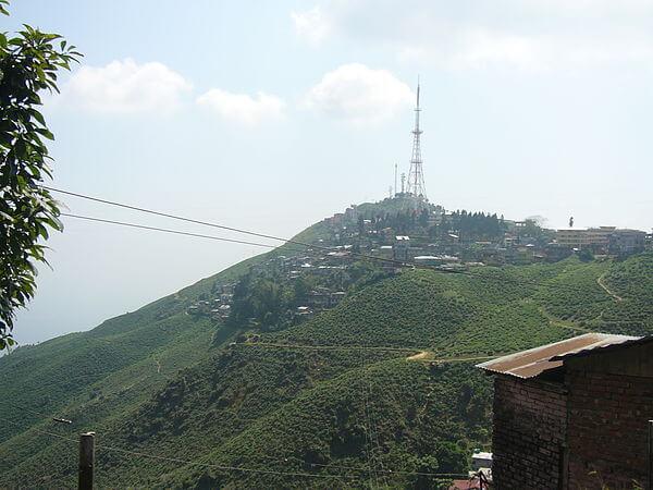 Dow Hill Of Kurseong