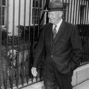 Presidential dogs: Dwight Eisenhower and Heidi