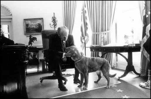 Presidential dogs: gerald ford and Golden Retriever
