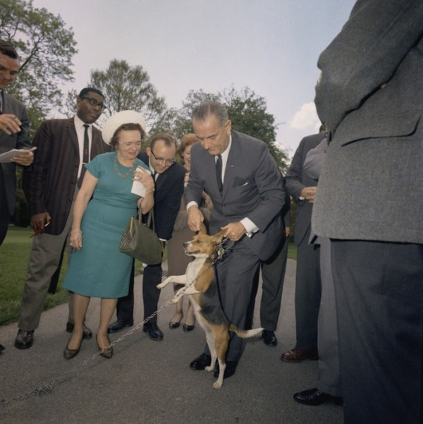 Presidential dogs:Lyndon B. Johnson lifting Him