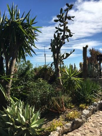 Jardin Exotique d'Èze