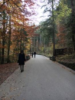 Caminho para o castelo