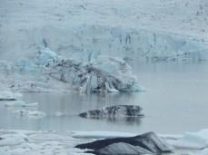 Jökulsárlón - lagoa de icebergs na Islândia