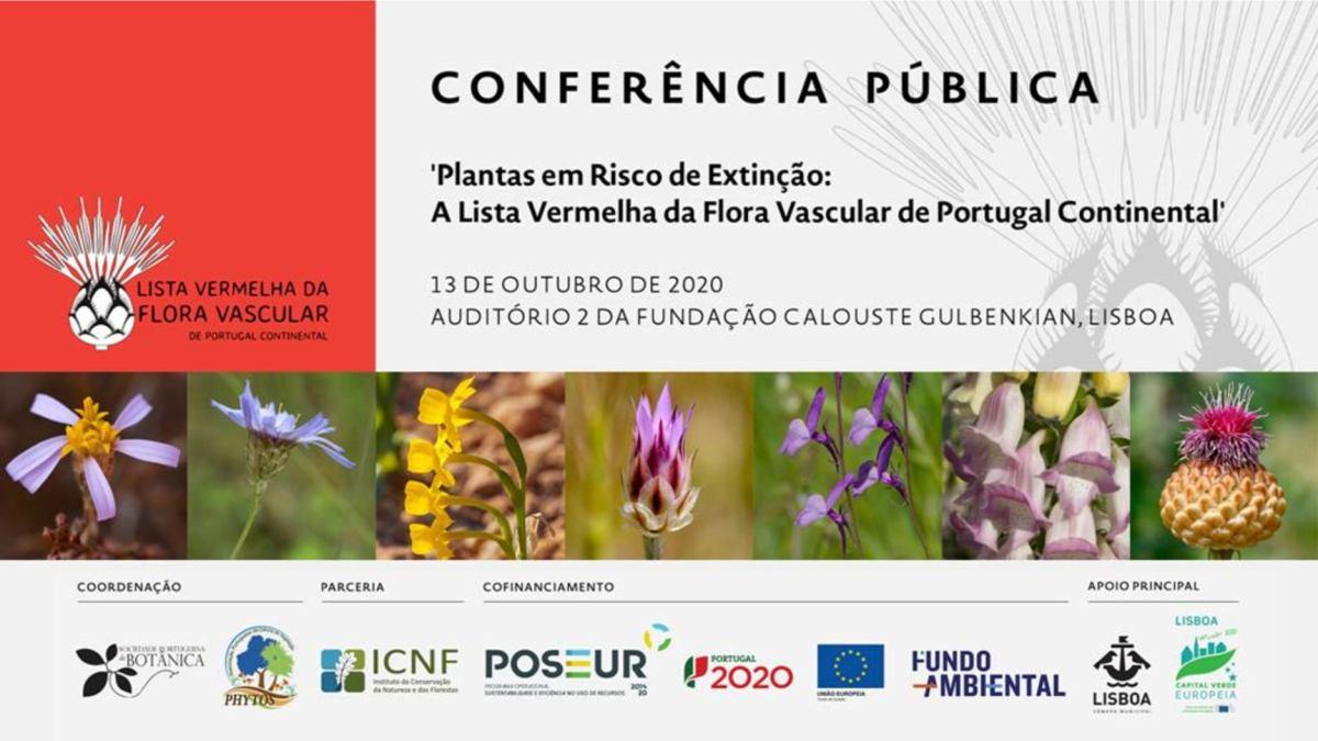 Sessão da tarde - Apresentação de Paulo Pereira, Assessor do Coordenador Técnico do projeto (SPBotânica)