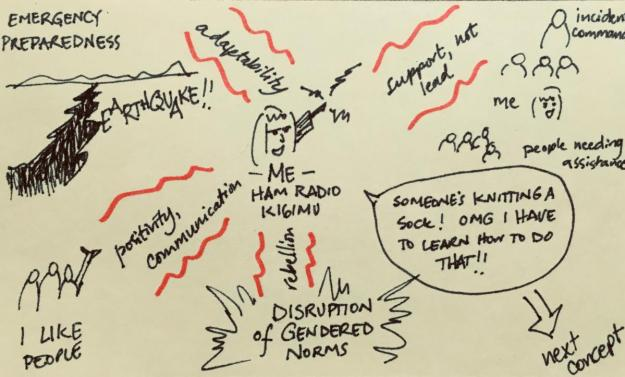 Diagram showing a woman's reasons for becoming an amateur radio operator (Ham)