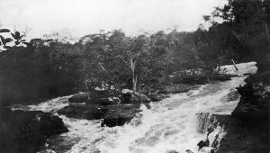 The River of Doubt rushes through a narrow chasm  created by rocks in this photograph from the Roosevelt adventure