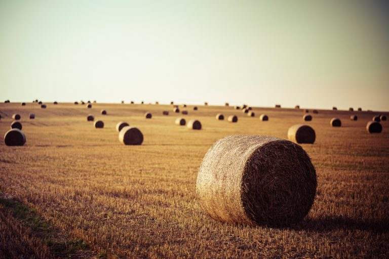 Needles haystacks, 5 tips for working with social data