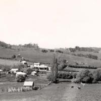 View of the township of Meadows, showing the main street running from left to right in the middle, with the general store