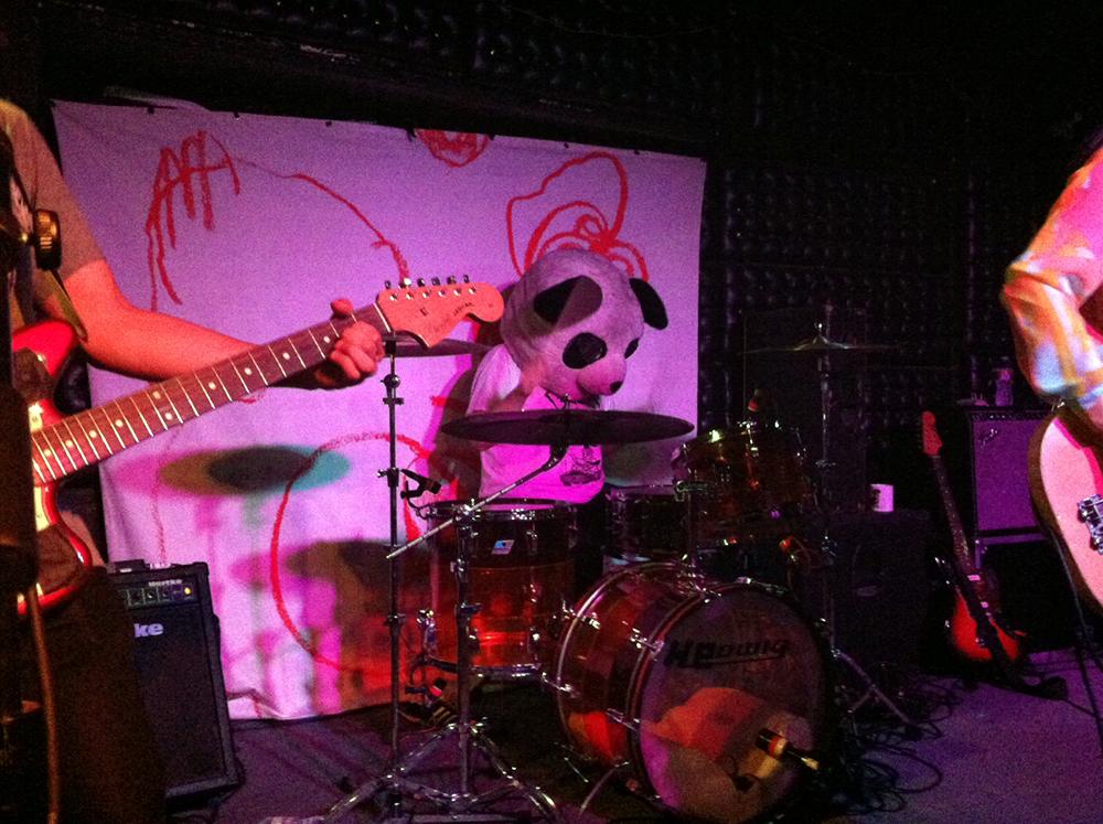 Yuck Drummer LSD Panda